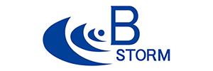 株式会社B-STORM